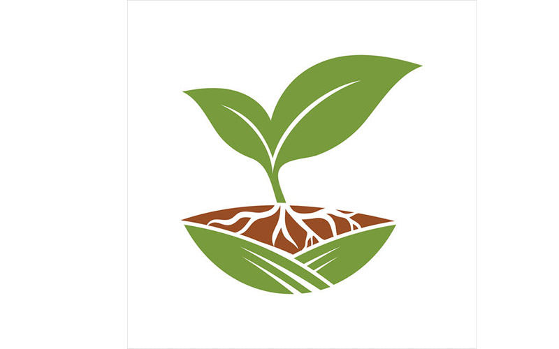 Семена, сад, огород